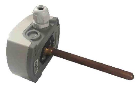 CW-2000管道温湿度传感器